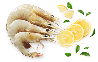 Buy Fish online @ Kochi  Fresh Fish Online   Free Home delivery